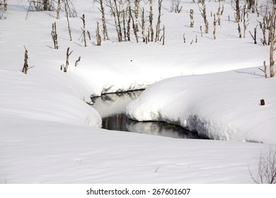 A snowy creek in northern Finland.