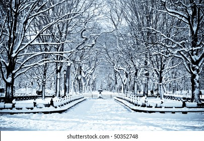 snowy day in central park