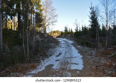 Snowy dirt road winding through the forest