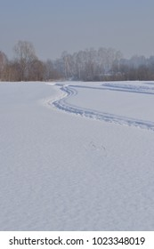 Snowy field and traces of the snowmobile. A vertical image.