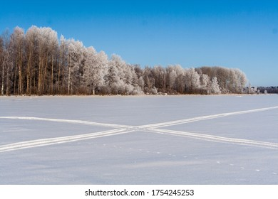 Snowy field with traces, trees at winter
