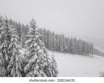 Snowy forest on the mountain slopes of Slovakia. Aerial view