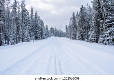 Snowy Forest Road in the Canadian Rockies on a Winter Day. A Car on the Road is Visible in Distance. Concept of Dangerous Driving Conditions.