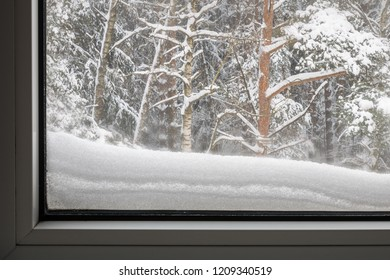 snowy forest viewed through the window