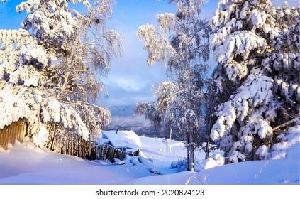 Snowy forest in winter scene. Winter snow forest village. Village in winter snow forest