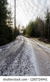 Snowy gravel road through a coniferous forest in a low angle image