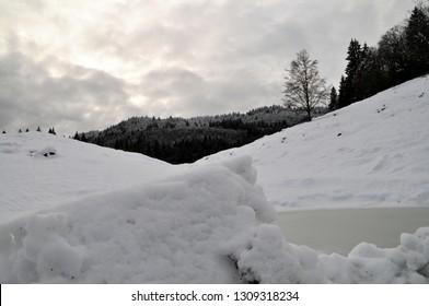 Snowy landscape in Asiago plateau (Italy)