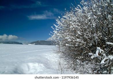 Snowy landscape, Asiago plateau, Vicenza, Italy