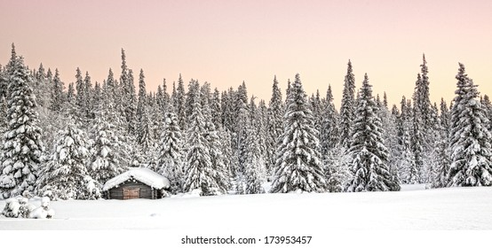 Snowy landscape with pine trees and wooden house from Finland,Lapland