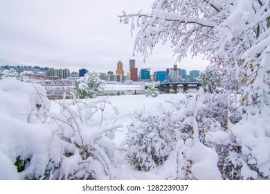 Snowy Landscape of Portland Oregon USA