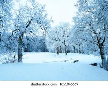 snowy landscape russia
