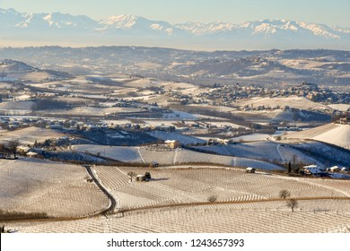 Snowy landscape with vineyard hills and Alps mountains in winter, Langhe, Piedmont, Italy