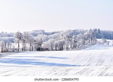 snowy landscape in winter in Masuria in eastern Poland
