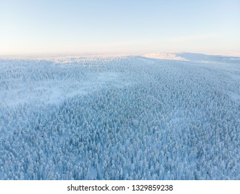 Snowy landscape of winter wonderland from Pyha-Luosto national park on northern Finland. This place is very popular on every season, for hiking and skiing