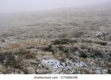 Snowy moorland in the fog.