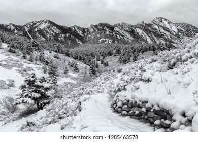 A snowy morning looking toward Shadow Canyon and Devil's Thumb from the Towhee Homestead Trail in the Flatirons South of Boulder, Colorado.