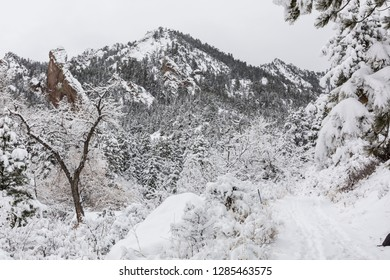 A snowy morning  in Shadow Canyon in the  Flatiron rock formations of South of Boulder, Colorado.
