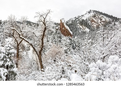 A snowy morning  in Shadown Canyon in the  Flatiron rock formations of South of Boulder, Colorado.