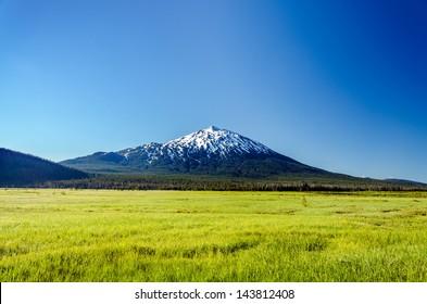 Snowy Mount Bachelor rising above a lush green meadow near Bend, Oregon