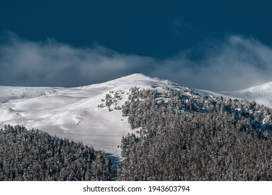 Snowy mountain forest on the mountainside. Winter mountain landscape. A snowy mountain top against a blue sky.