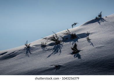 Snowy mountain with green plants at blue sky background