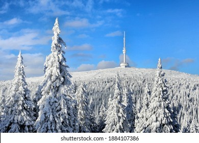 Snowy mountain Praded CZ, trees under a blanket of snow, landscape, Praděd Mountain, highest mountain in Moravia, Peter's stones are part of the National Nature Reserve - Shutterstock ID 1884107386
