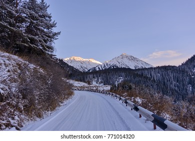 Snowy mountain road with trees