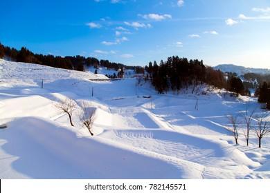 Snowy mountain scene , fresh snow and trees.