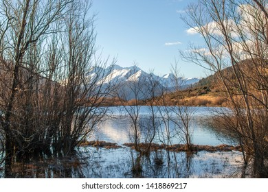Snowy mountain view from Glenorchy lagoon walkway framed with branches. Blue sky with clam lake. Famous walkway in south island of new zealand.