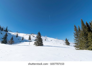 Snowy mountain Vitosha. Near Sofia, Bulgaria.