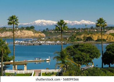 Snowy Mountains Behind Palm Trees in Newport Beach