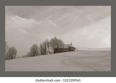 snowy mountains Karpaty in winter morning light, black & white