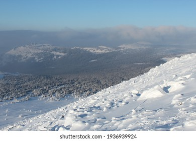 snowy mountainside on the background of a winter forest