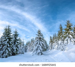 Snowy path during winter in the mountains with nice sky