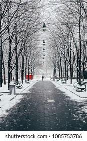 A snowy path in New York City