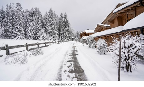 snowy path in a winter wonderland, conifer covered in snow, wooden house