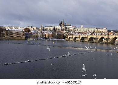 The snowy Prague gothic Castle with the Charles Bridge, Czech Republic