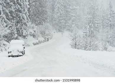 Snowy road among pine trees in winter with an SUV parked.