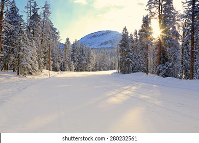 Snowy road with sunlight in the Uinta Mountains, Utah, USA.