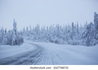 Snowy road surrounded by pine trees in snow, Lapland