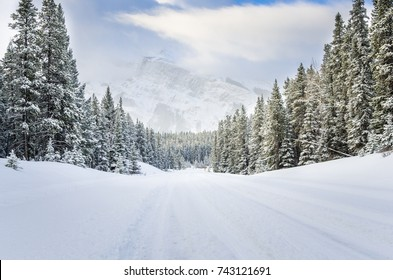 Snowy Road through a Forested Mountain Landscape in Winter
