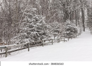 Snowy scene with trees and wooden fence