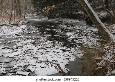 Snowy Sheridan Creek, Rattray Marsh, Ontario