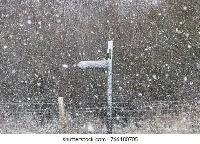 Snowy signpost in countryside