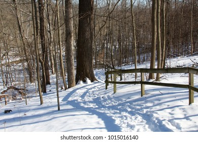 The snowy slippery trail along side of the wooden fence in the forest.