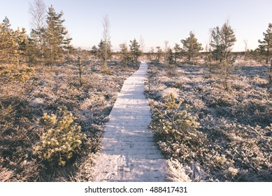 snowy tourist hiking trail in woods in winter. trails in snow - vintage film effect