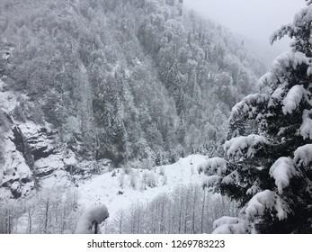 Snowy view in Turkey / Karadeniz / Ayder  Plateau