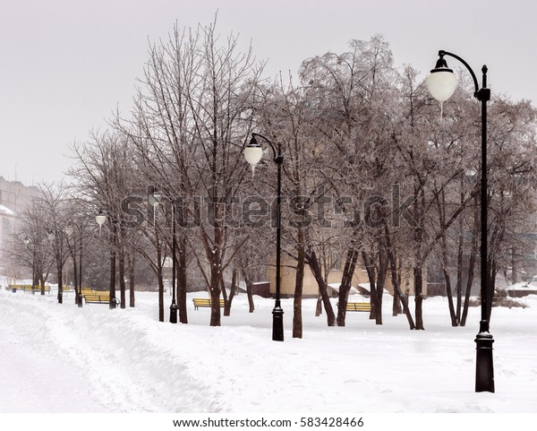 the snowy walk in the park.