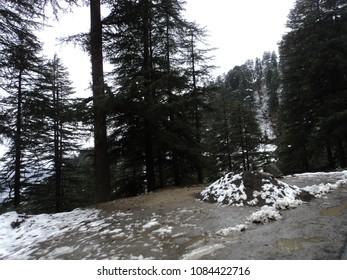 Snowy way in Kufri