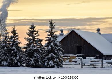 Snowy winter farm scene in Fairbanks, Alaska.